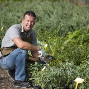 Gärtner oder Gartenbauhelfer bei Pflanzenauswahl